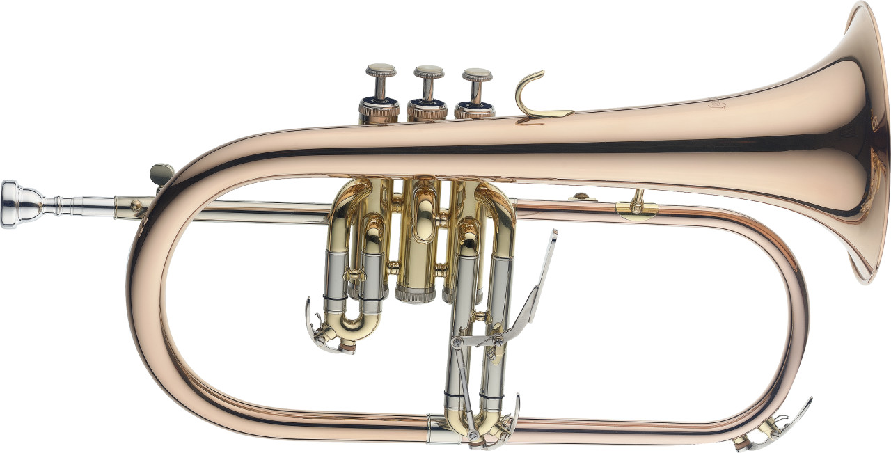 Professionele Bb Bugel, Monel, Instrument in goudmessing