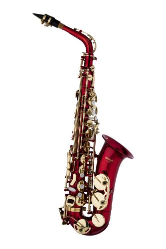 Eb Alto Saxophone, in soft case