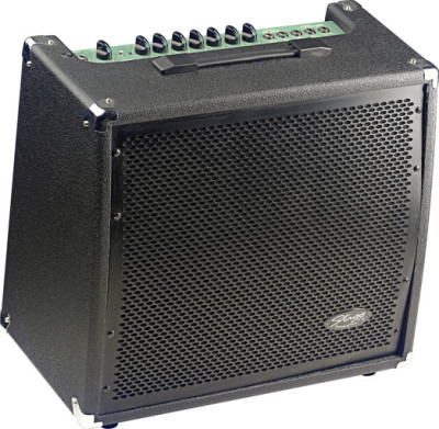60 W RMS 2-channel Guitar Amplifier with spring reverb