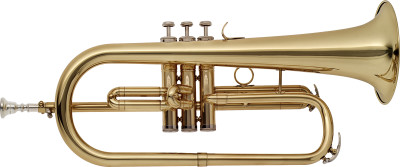 Bb flugelhorn with brass body, M-bore and soft case