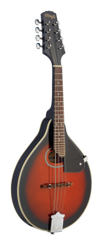 Bluegrass Mandolin with spruce top