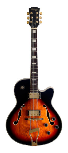 """Jazz"" electric guitar - Semi-acoustic model"